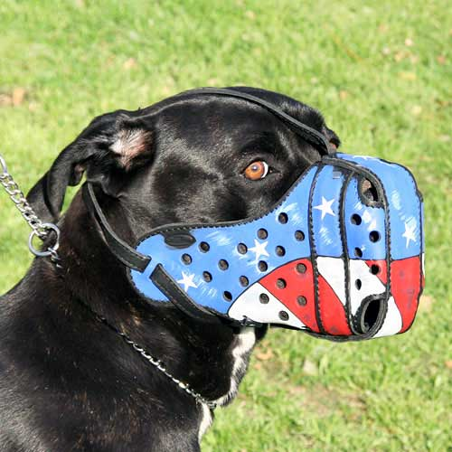 Patriotic Leather Cane Corso Muzzle with American Flag Painting