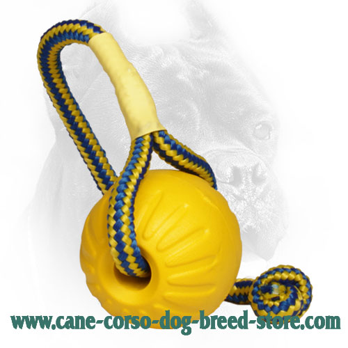 Small 3 Inch Foam Cane Corso Ball for Training
