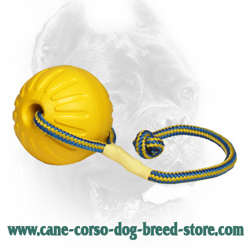 Large 3 1/2 Inch Foam Cane Corso Ball for Training and Playing