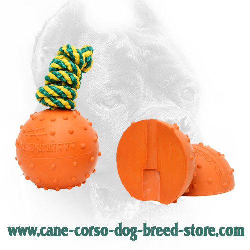 Medium Water Floating Rubber Cane Corso Ball with Nylon Rope