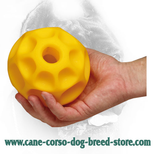 5 Inch Large Tetraflex Cane Corso Ball for Mental Developing