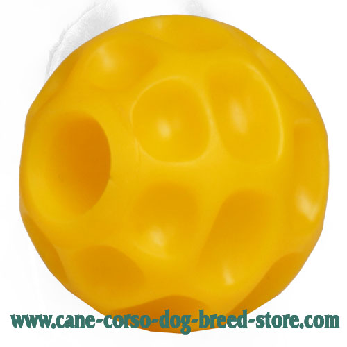 Small 3 Inch Tetraflex Cane Corso Ball for Holding Treats