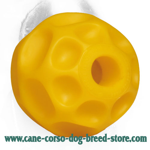 Medium Tetraflex Cane Corso Ball for Chewing