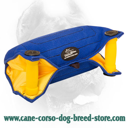 French Linen Cane Corso Bite Builder for Basic Puppy Training