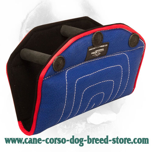 Durable French Linen Cane Corso Bite Builder for Dog Training