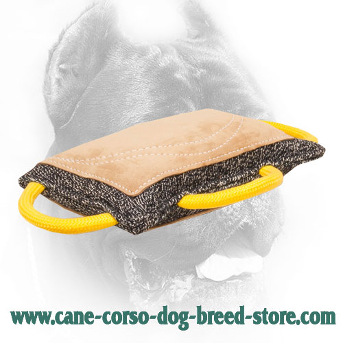 French Linen Cane Corso Bite Pad with Leather Surface