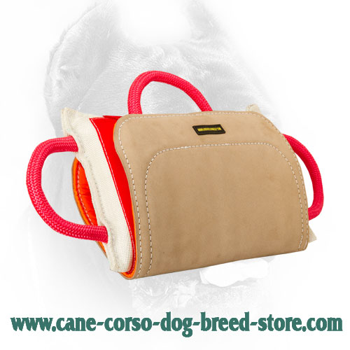 Pro Cane Corso Bite Pillow with Leather Cover
