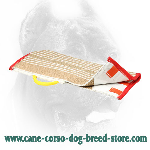 Extra Durable Jute Cane Corso Protection Bite Cover