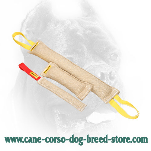 Jute Cane Corso Bite Training Set (3 Dog Items)