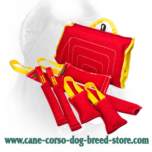 French Linen Cane Corso Bite Training Set (7 Dog Supplies)