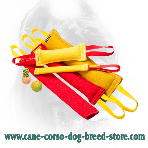 French Linen Cane Corso Bite Training Set (8 Dog Supplies)