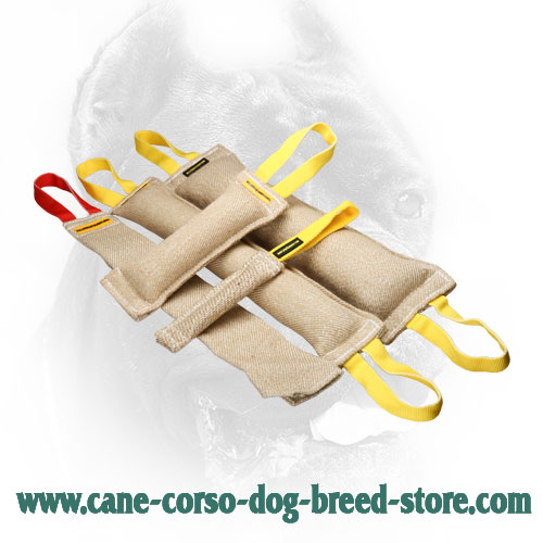 Jute Cane Corso Bite Training Set of 5 Tugs for Adult Dogs