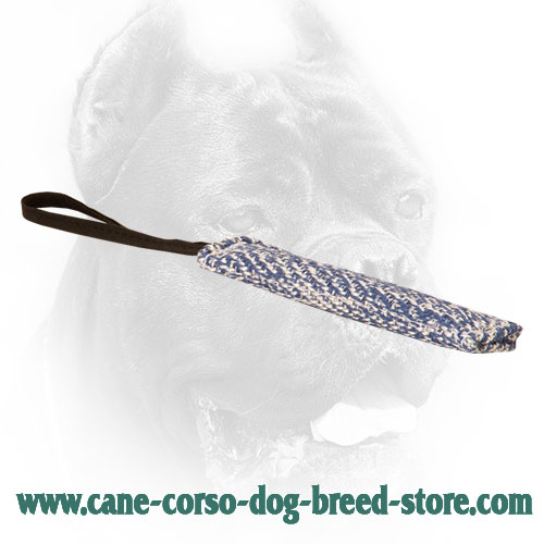 35% OFF - LIMITED OFFER Small French Linen Bite Tug for Puppy Training