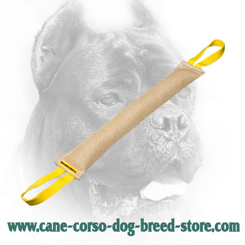 Long Jute Cane Corso Bite Tug for Training