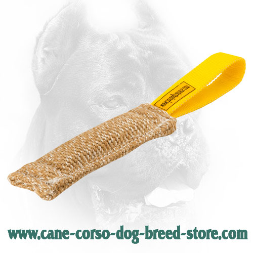 High Quality Jute Bite Tug for Puppy Training