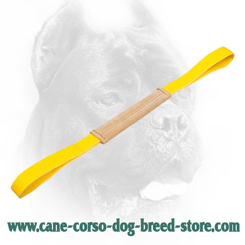 Small Leather Cane Corso Bite Tug