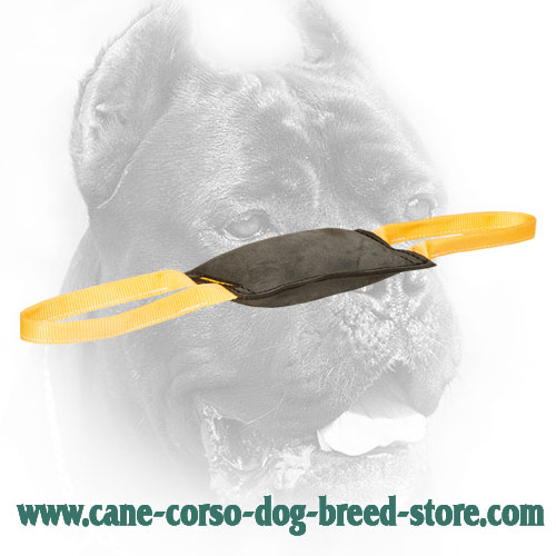 Comfy in Use Leather Cane Corso Bite Tug for Young Dog Training