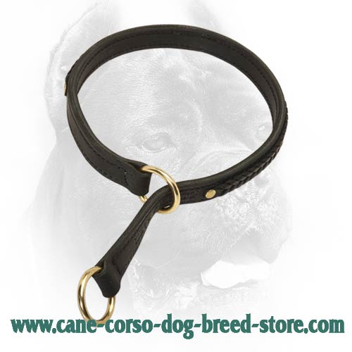Braided Leather Choke Collar for Cane Corso