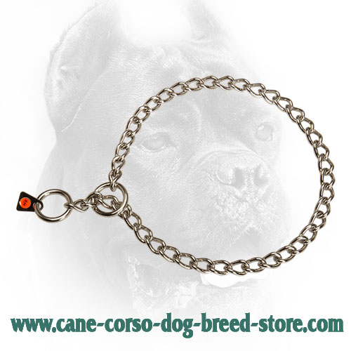 Stainless Steel Cane Corso Choke Collar with 3 mm Links