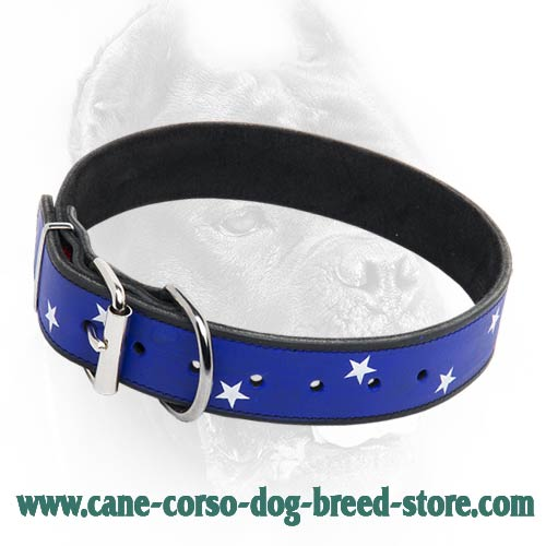 Amazing Patriotic American Flag Dog Collar for Cane Corso