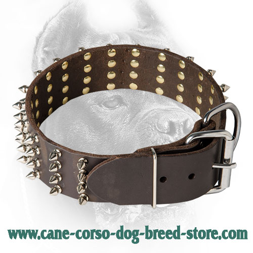 2 Inch Spiked Leather Cane Corso Collar