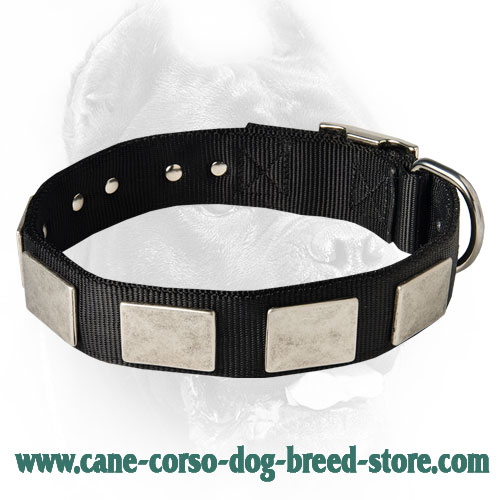 Nylon Dog Collar For Large and Medium Breeds With Massive Plates