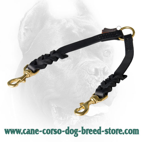 Braided Leather Cane Corso Coupler for Walking 2 Dogs