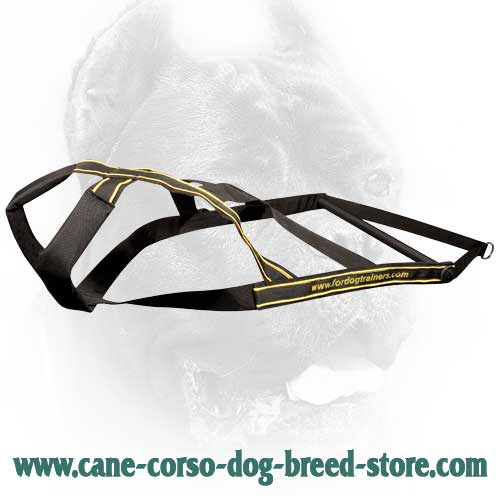 Weight Pulling Nylon Cane Corso Harness