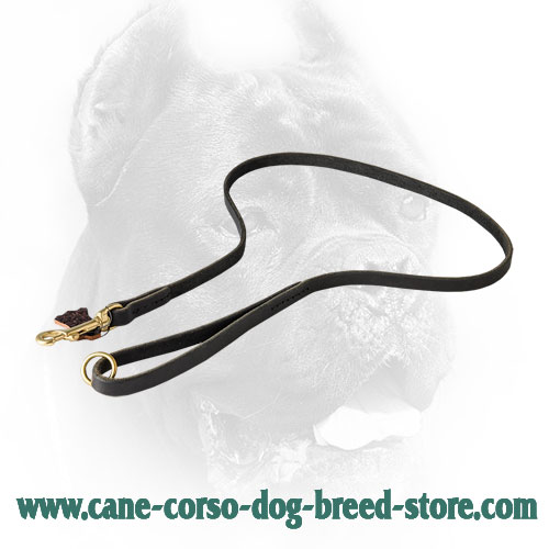 Classic Stitched Leather Cane Corso Leash - Click Image to Close