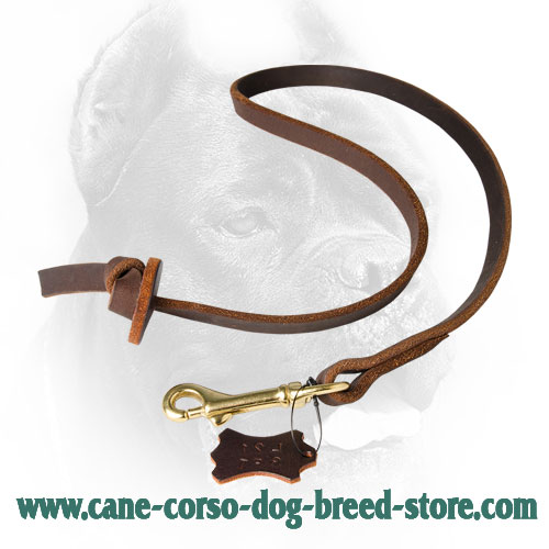 Leather Cane Corso Leash with Circle Handle for Dog Training