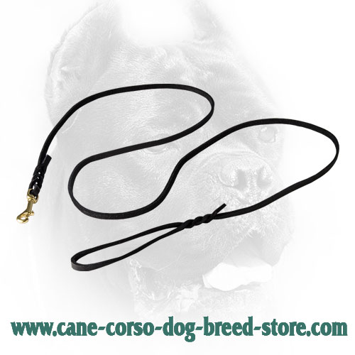 10 mm Braided Leather Cane Corso Leash