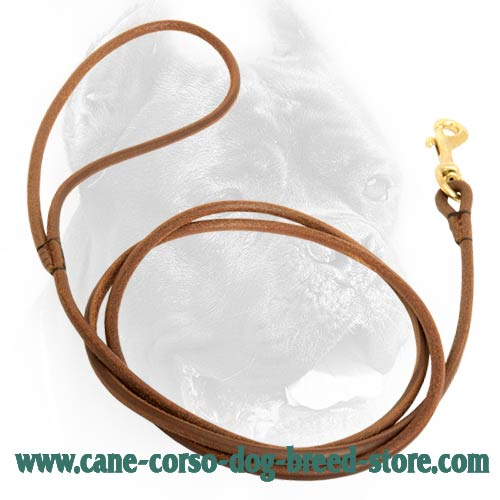 5 mm Round Leather Cane Corso Leash for Dog Shows