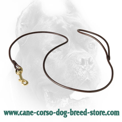 6 mm Round Leather Cane Corso Leash for Dog Shows