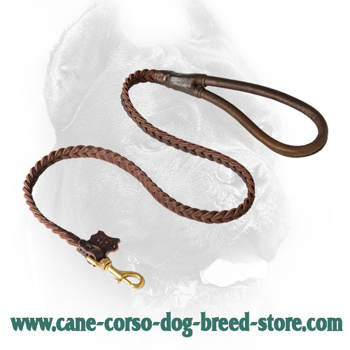 Braided Leather Cane Corso Leash with Comfy Handle