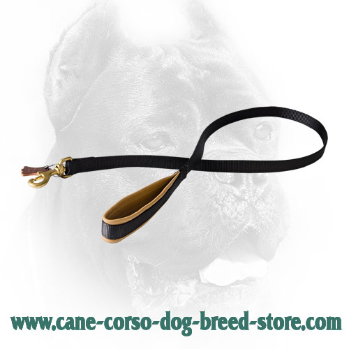 Multipurpose Nylon Cane Corso Leash with Padded Handle