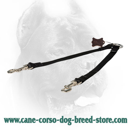 Stitched Nylon Cane Corso Coupler for Walking 2 Dogs