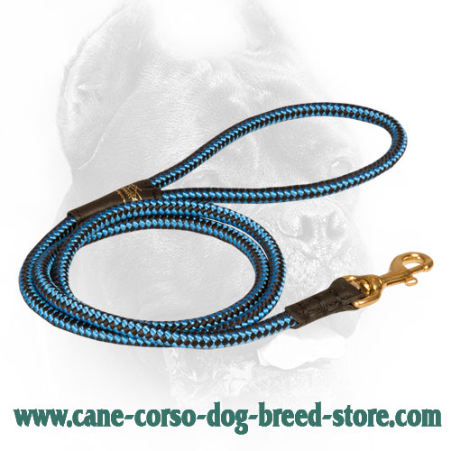 Chess Ornament Nylon Cane Corso Leash with Brass Hardware