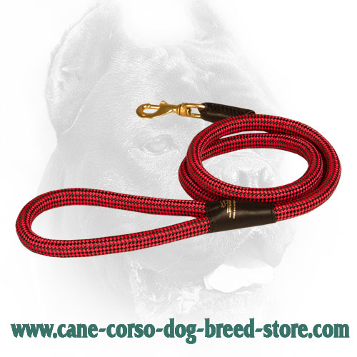 20 mm Nylon Cord Cane Corso Leash with Brass Snap Hook