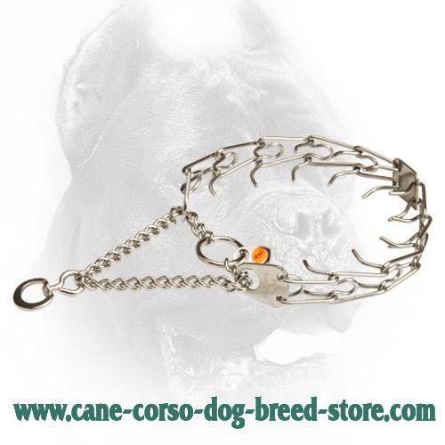 Herm Sprenger Stainless Steel Cane Corso Prong Collar with Swivel