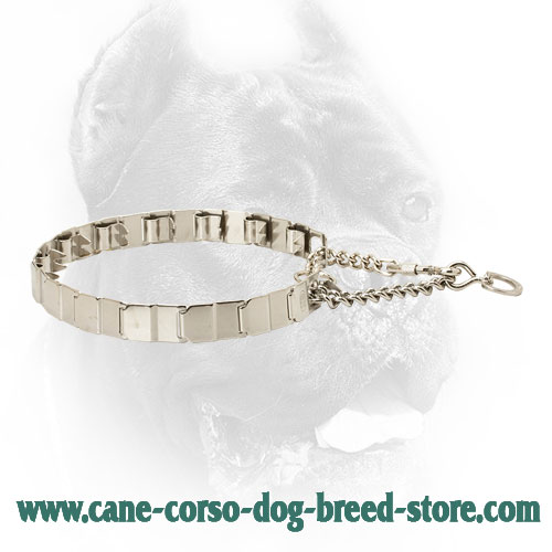 24 Inch Neck Tech Stainless Steel Newfoundland Prong Collar