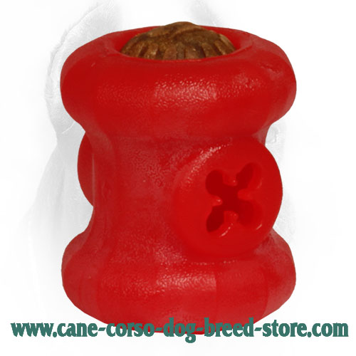 Medium Everlasting Cane Corso Fire Plug for Chewing