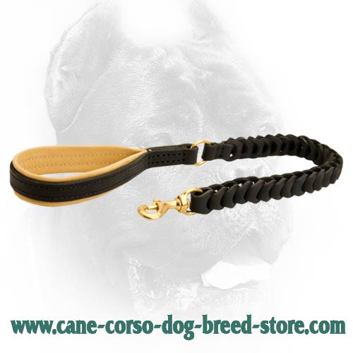 Leather Braided Dog Leash - Universal Lead for Cane Corso Breed
