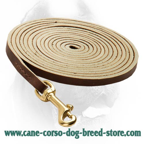 Extremely Durable Leather Dog Leash for Work with Cane Corso