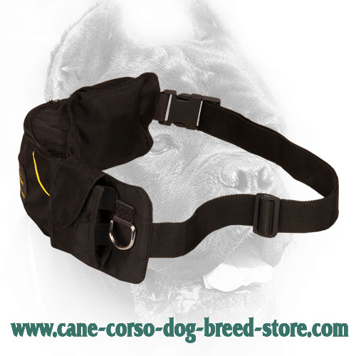Nylon Dog Training Pouch with Pockets for Cane Corso Training