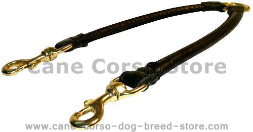 Double Dog Leash Coupler for two dogs-Cane Corso LEADS