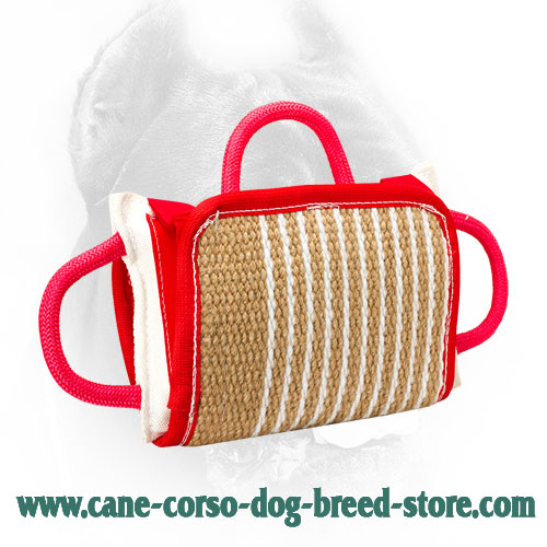 Training Cane Corso Bite Pillow with Removable Jute Cover