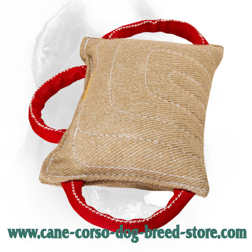 3 Handled Dog Bite Pad Made of Jute