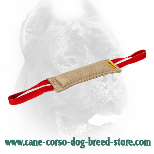 Cane Corso Dog Bite Tug Made of Natural Hypoallergic Jute Material