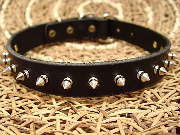 Designer Leather Cane Corso Collar with Row of Spikes for Walking