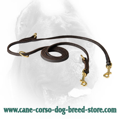 Extra Durable Leather Cane Corso Leash Meant for Various Dog Settings